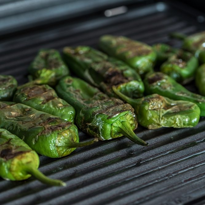 Grilled green bell peppers on electric grill spanish style. Close up